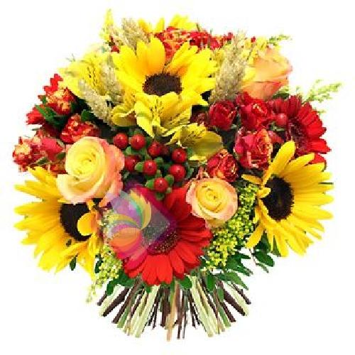 Punti luce spediamo fiori dolci e regali a domicilio - Fiore collegare i punti ...
