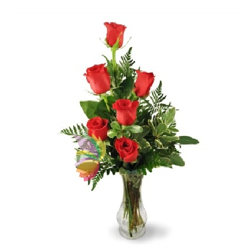 Bouquet di sei rose rosse