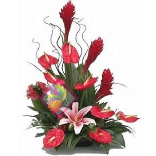 Famoso Lucrezia | Spediamo fiori, dolci e regali a domicilio WH89