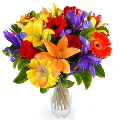 Amato Colori d estate | Spediamo fiori, dolci e regali a domicilio QN11