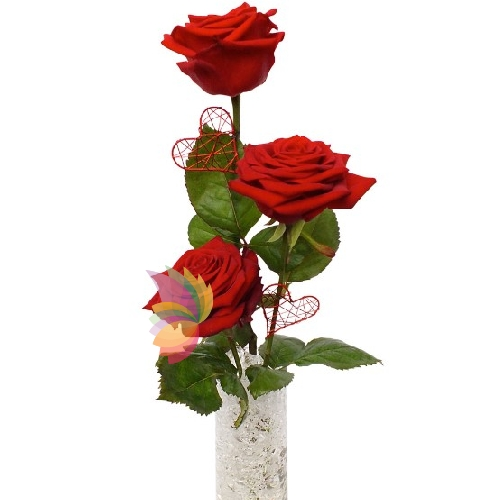 Tre rose rosse spediamo fiori dolci e regali a domicilio for Quadri con rose rosse