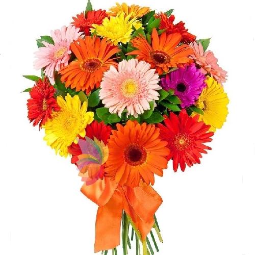 Amato Fiori per Compleanno | Augura buon compleanno con dei fiori HV43