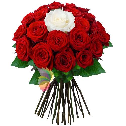 Souvent Bouquet di rose rosse con una rosa bianca centrale | Spediamo  TV31