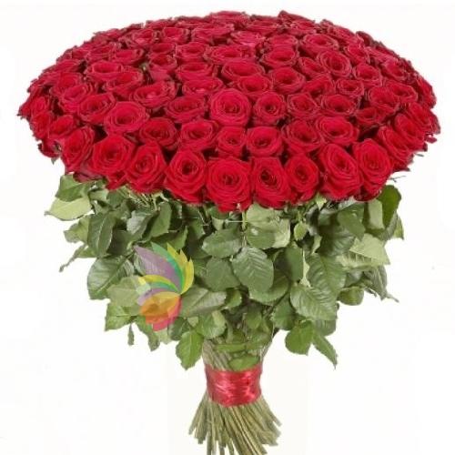 Famoso 100 stupende rose rosse per dire ti amo! A domicilio in poche ore  GY41
