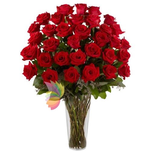Mazzo di 50 rose rosse consegnato direttamente al for Quadri con rose rosse